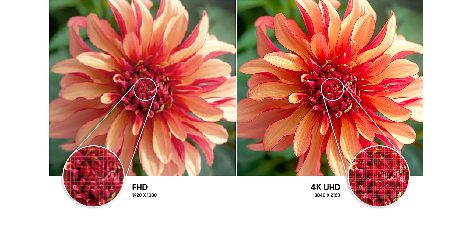 Feel the reality of 4K UHD Resolution_UA85AU8000KXXA-Extension-Images_appliance_Modular