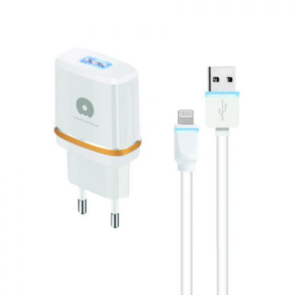 Young-Pioneer----Lightning-Travel-Adaptor---Gold_main_YP-accessories